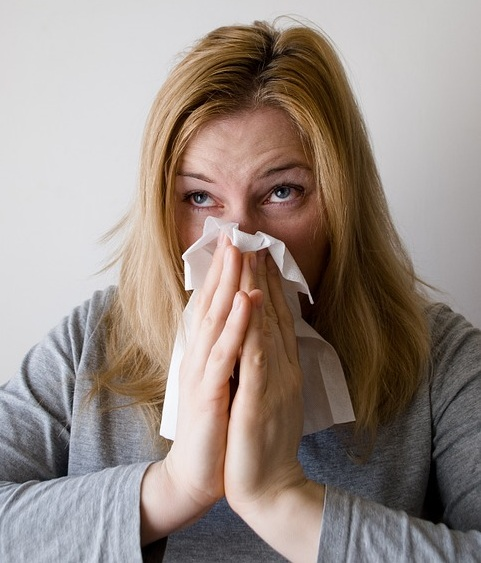 Key Difference - Hayfever vs Cold