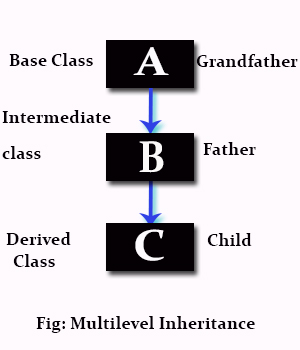 Key Difference Between Multiple and Multilevel Inheritance