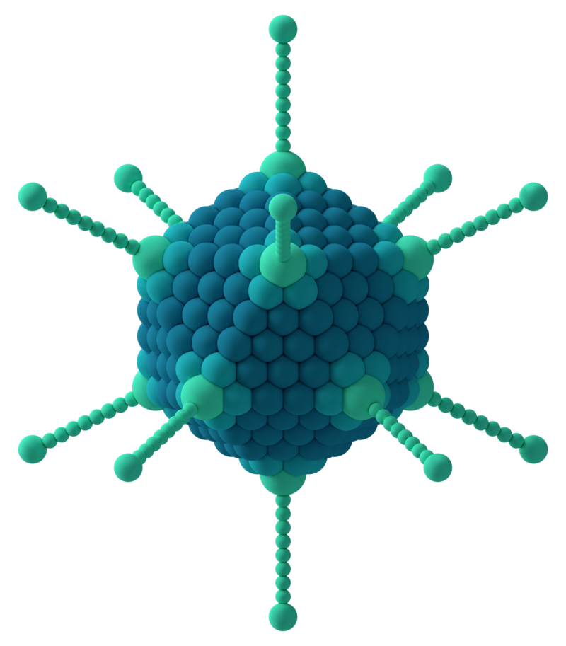 Viral Nano News Viralnanonews: Difference Between Adenovirus And Retrovirus