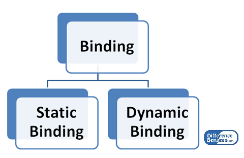 Difference Between Static Binding and Dynamic Binding