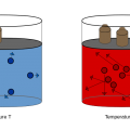 Difference Between Combined Gas Law and Ideal Gas Law