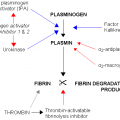 Key Difference Between D Dimer and FDP