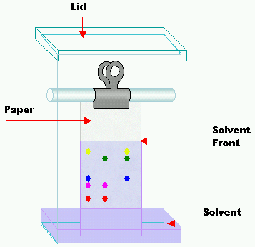 Difference Between Paper Thin Layer and Column Chromatography