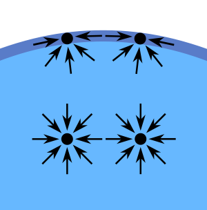 Difference Between Surface Tension and Capillary Action