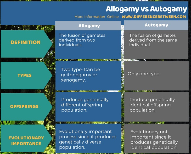 Difference Between Allogamy and Autogamy in Tabular Form