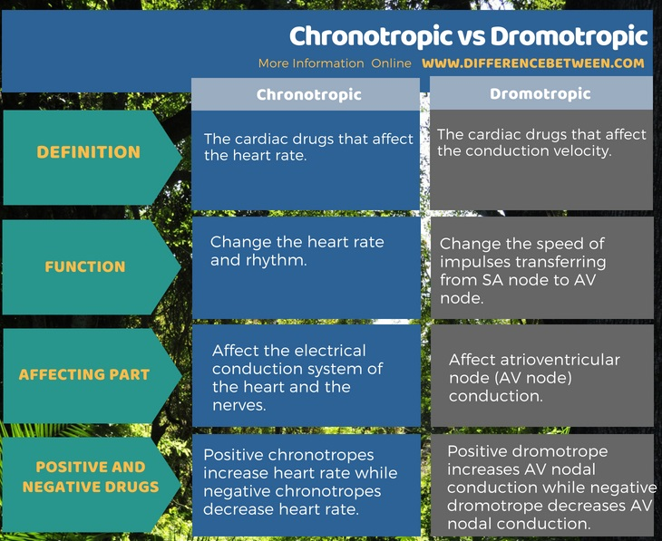 Difference Between Chronotropic and Dromotropic in Tabular Form