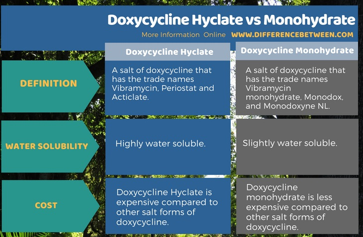 Difference Between Doxycycline Hyclate and Monohydrate in Tabular Form