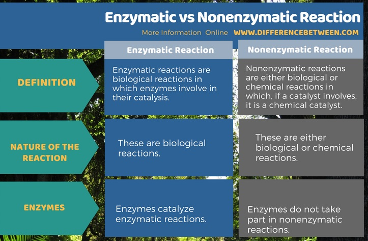 Difference Between Enzymatic and Nonenzymatic Reaction in Tabular Form