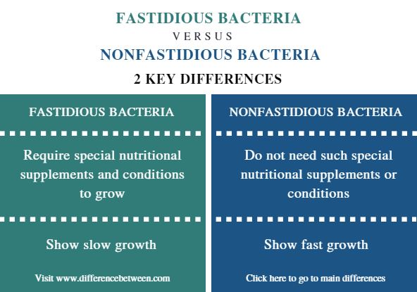 Difference Between Fastidious and Nonfastidious Bacteria - Comparison Summary