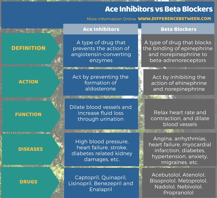 Difference Between Ace Inhibitors and Beta Blockers in Tabular Form