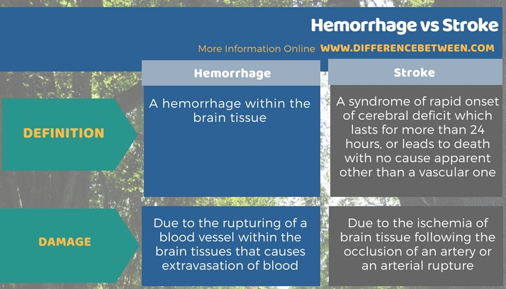 Difference Between Hemorrhage and Stroke in Tabular Form