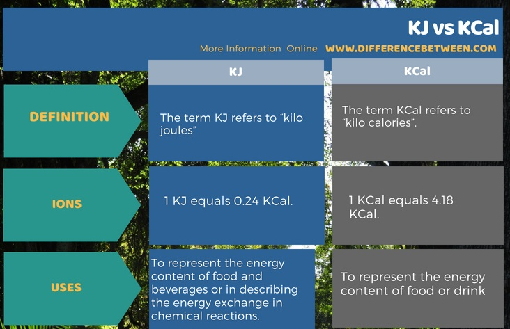 Difference Between KJ and KCal in Tabular Form