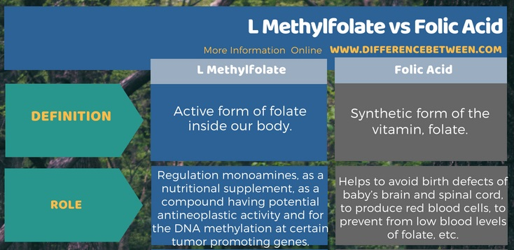 Difference Between L Methylfolate and Folic Acid in Tabular Form