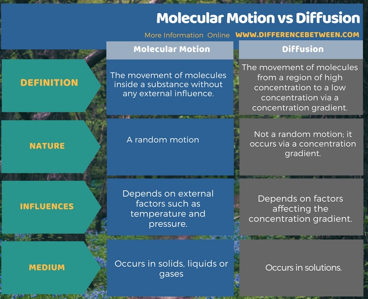 Difference Between Molecular Motion and Diffusion in Tabular Form