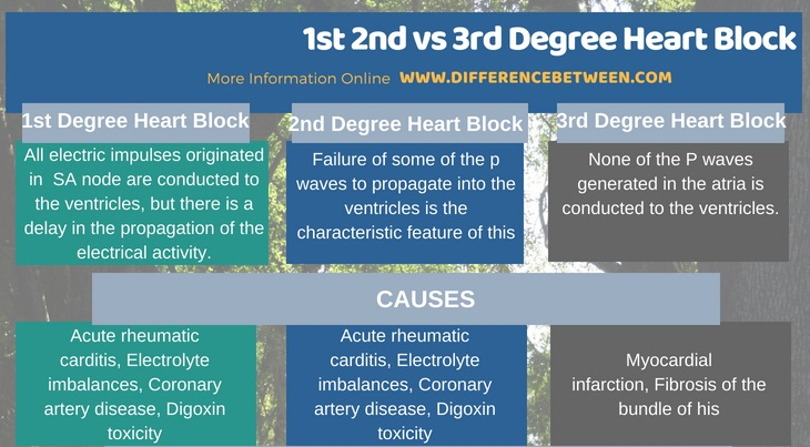 Difference Between 1st 2nd and 3rd Degree Heart Block in Tabular Form