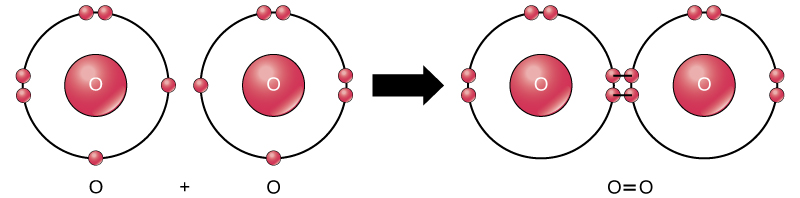 Key Difference Between Atomic Oxygen and Molecular Oxygen