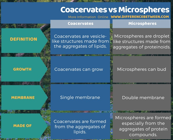 Difference Between Coacervates and Microspheres in Tabular Form