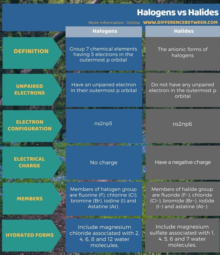 Difference Between Halogens and Halides in Tabular Form