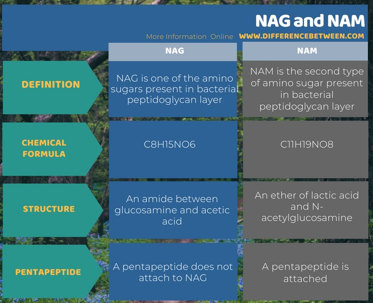 Difference Between NAG and NAM in Tabular Form