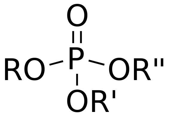 Difference Between Organic and Inorganic Phosphate