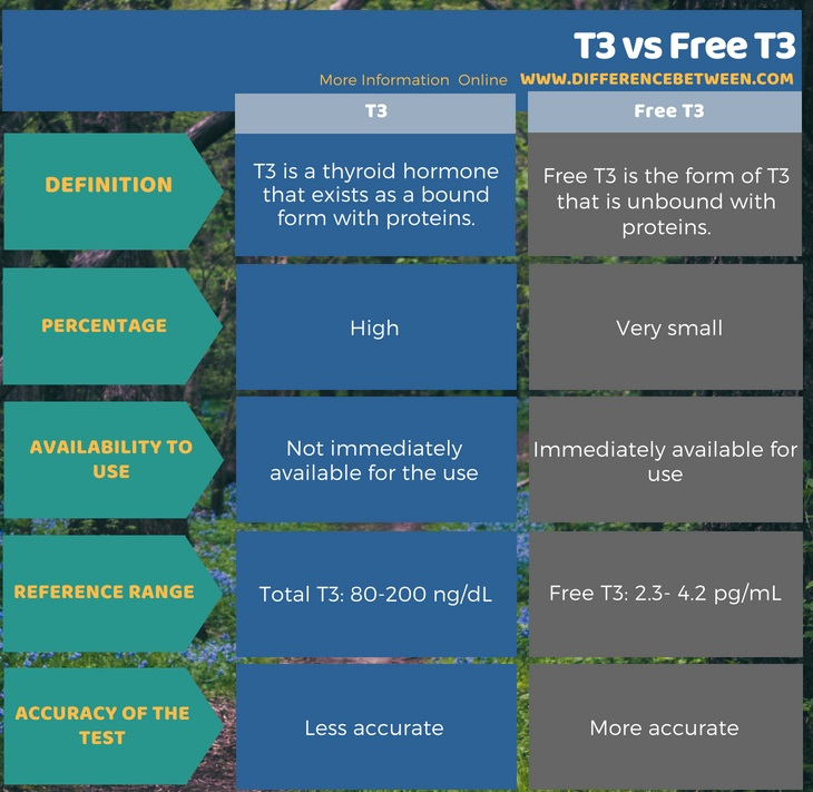 Difference Between T3 and Free T3 in Tabular Form