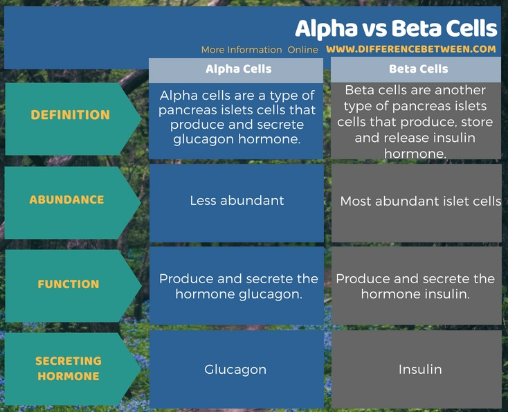 Difference Between Alpha and Beta Cells in Tabular Form