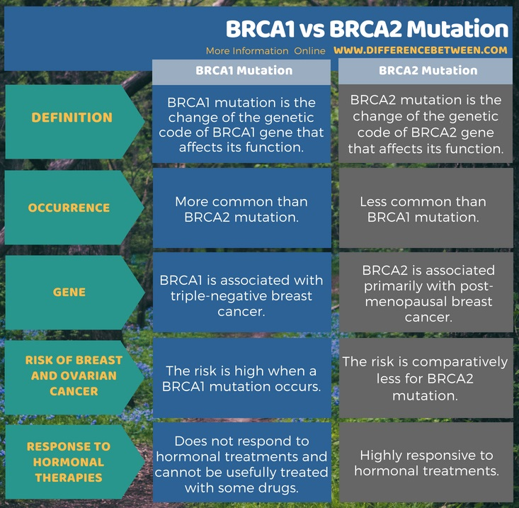 Difference Between BRCA1 and BRCA2 Mutation in Tabular Form