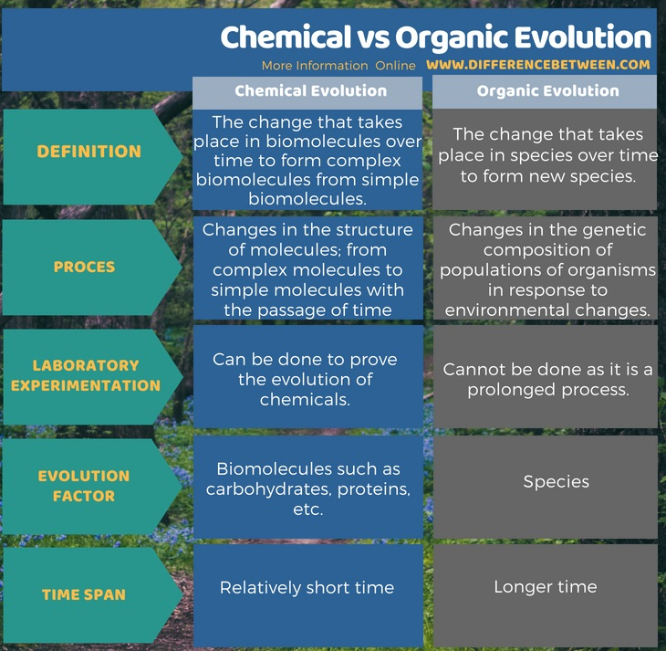 Difference Between Chemical and Organic Evolution in Tabular Form