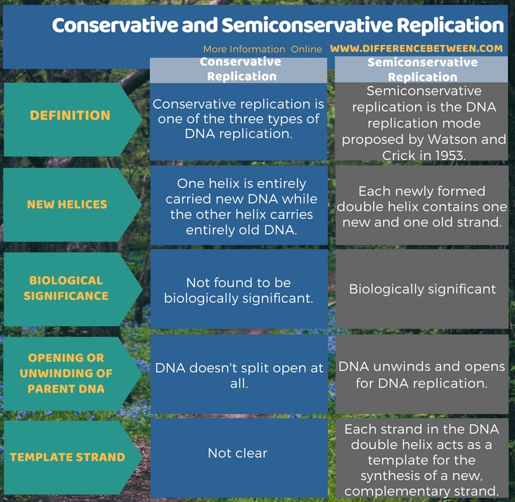 Difference Between Conservative and Semiconservative Replication in Tabular Form