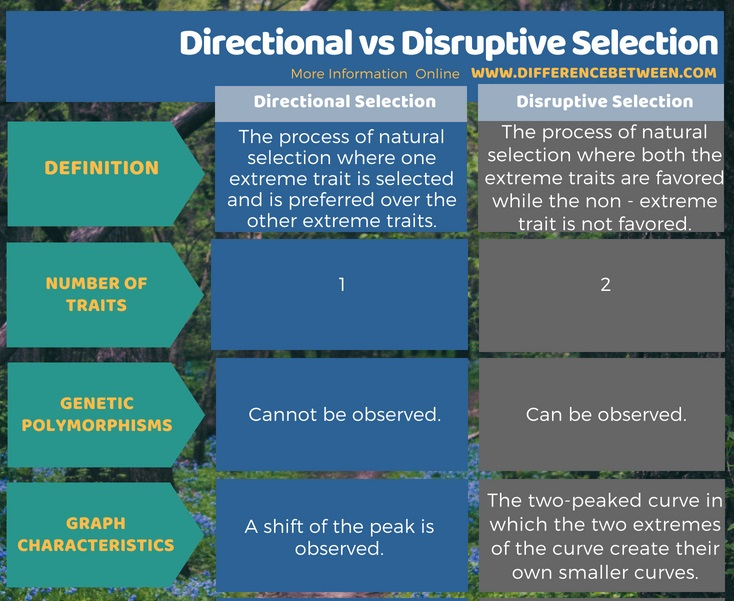 Difference Between Directional and Disruptive Selection in Tabular Form