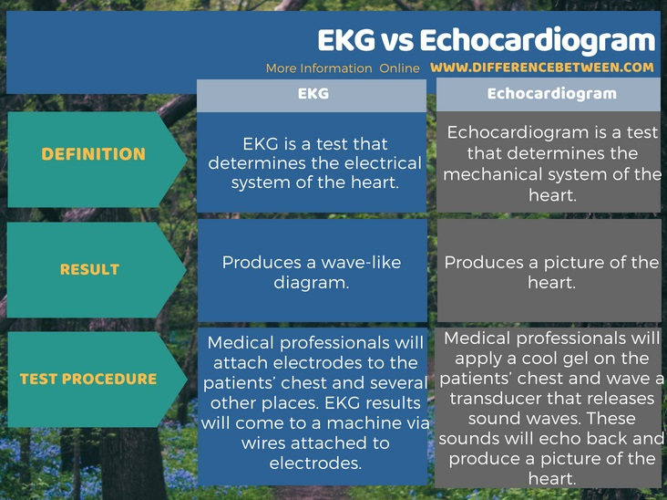 Difference Between EKG and Echocardiogram in Tabular Form