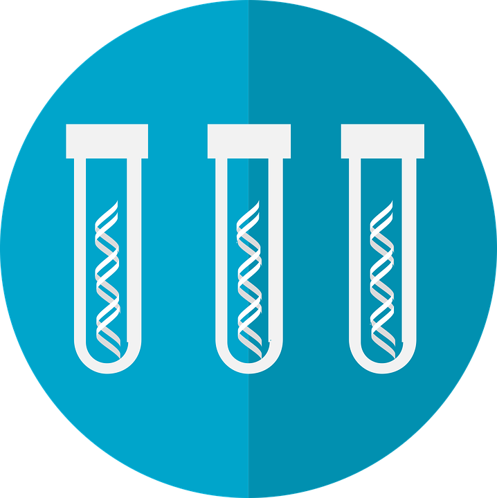 Key Difference Between Genetic Testing and Screening