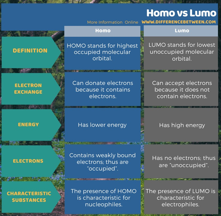 Difference Between Homo and Lumo in Tabular Form