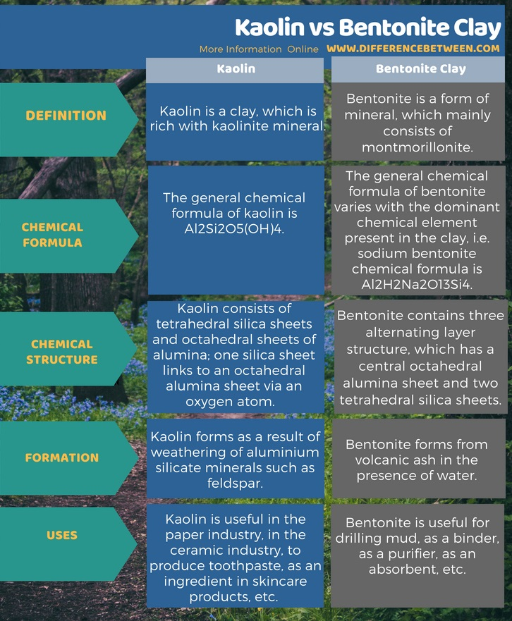 Difference Between Kaolin and Bentonite Clay in Tabular Form