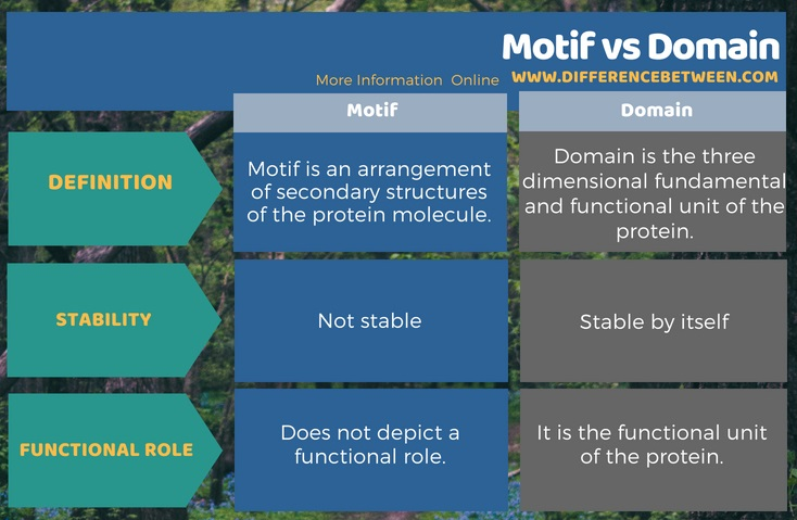 Difference Between Motif and Domain in Tabular Form