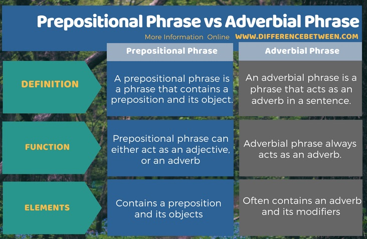 Difference Between Prepositional Phrase and Adverbial Phrase | Compare the  Difference Between Similar Terms