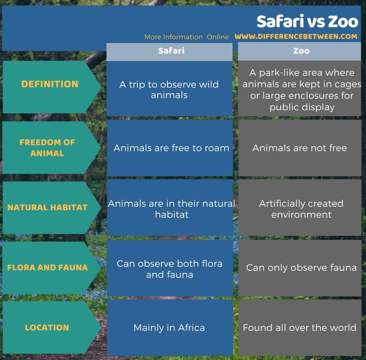 Difference Between Safari and Zoo in Tabular Form