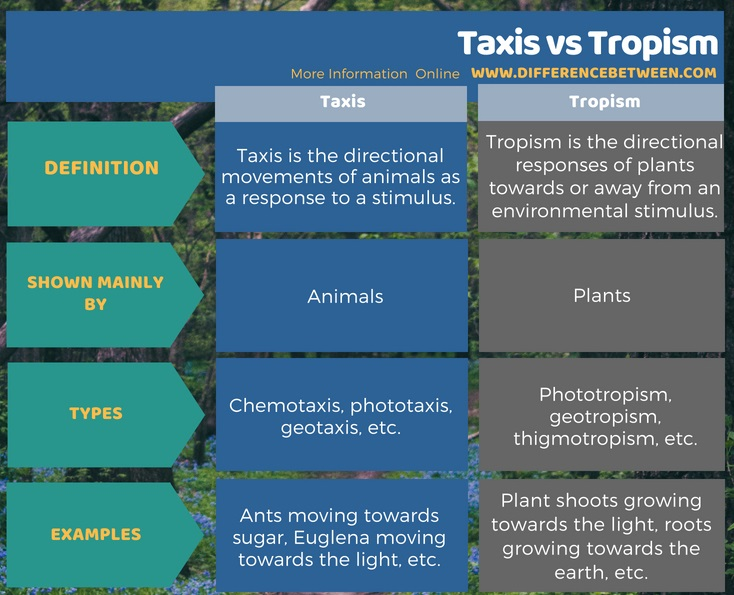 Difference Between Taxis and Tropism in Tabular Form