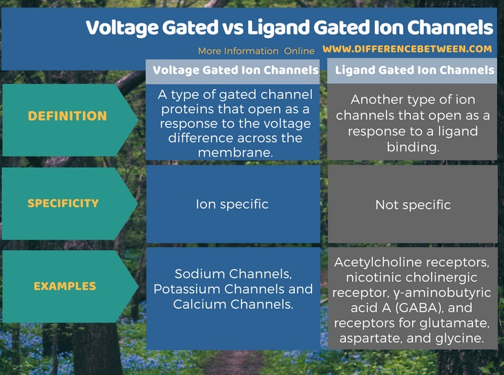 Difference Between Voltage Gated and Ligand Gated Ion Channels in Tabular Form