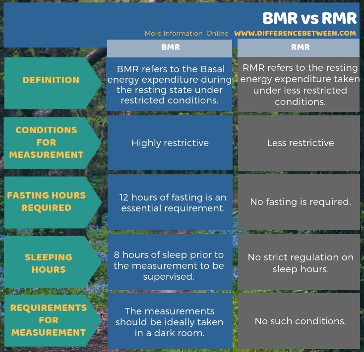 Difference Between BMR and RMR in Tabular Form