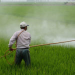 Difference Between Biological Control and Chemical Control