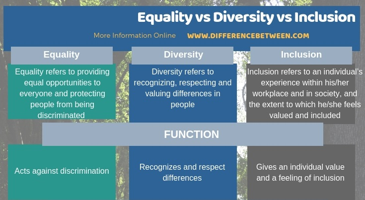 Difference Between Equality Diversity and Inclusion in Tabular Form