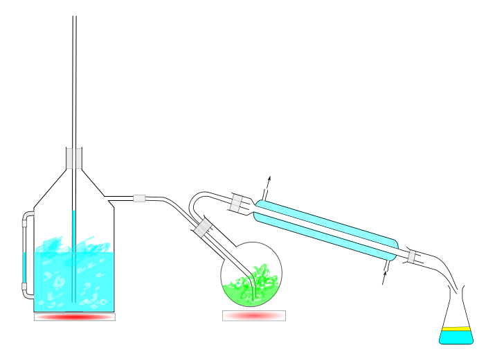Difference Between Steam Distillation and Fractional Distillation_Fig 01