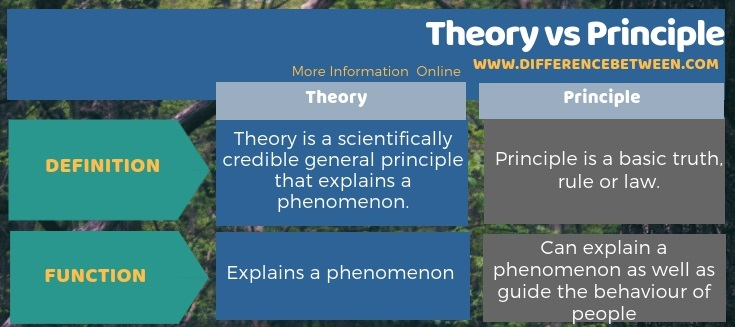 Difference Between Theory and Principle in Tabular Form