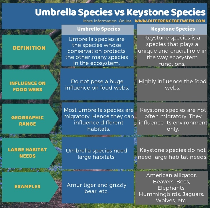 Difference Between Umbrella Species and Keystone Species in Tabular Form