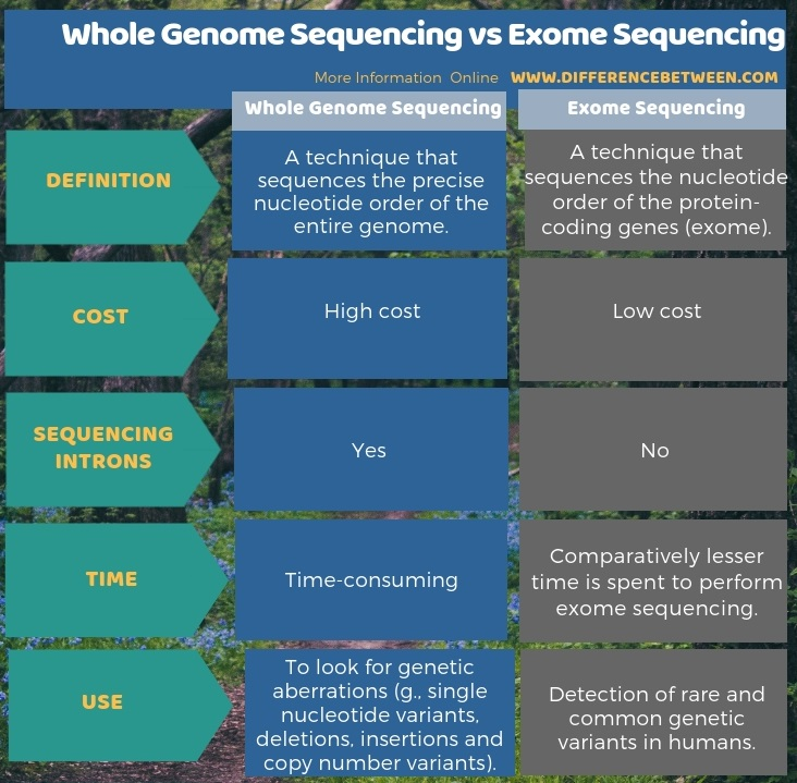 Difference Between Whole Genome Sequencing and Exome Sequencing in Tabular Form
