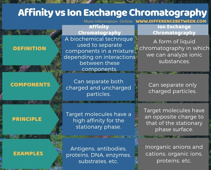 Difference Between Affinity and Ion Exchange Chromatography in Tabular Form