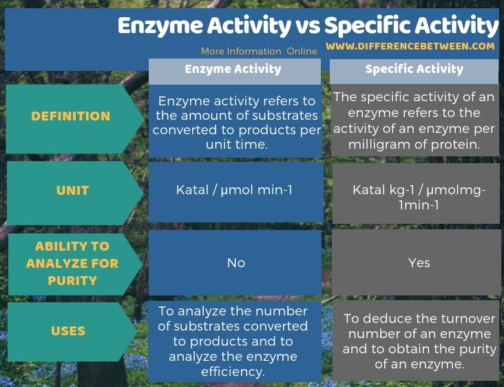 Difference Between Enzyme Activity and Specific Activity in Tabular Form