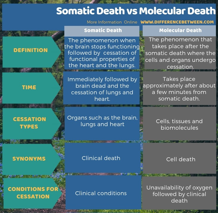 Difference Between Somatic Death and Molecular Death in Tabular Form