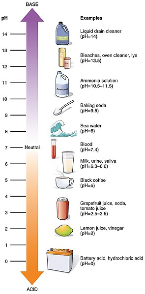 Difference Between Total Alkalinity and pH